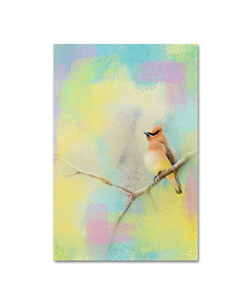 "Trademark Global Jai Johnson 'Song Of The Waxwing' Canvas Art - 32"" x 22"" x 2"""