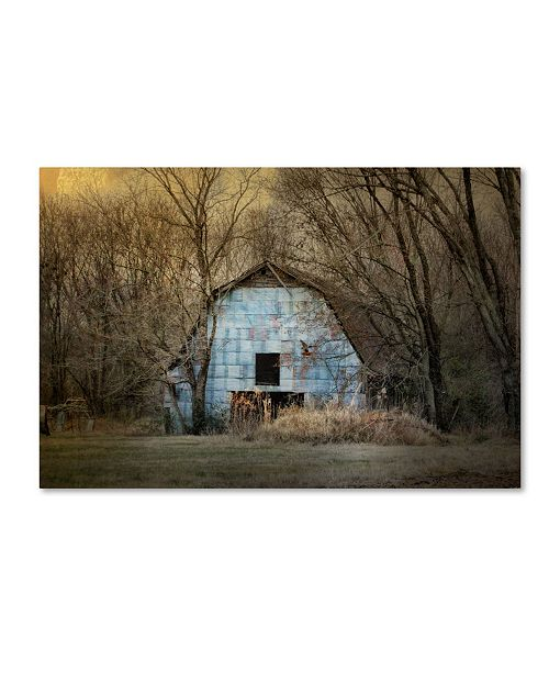 "Trademark Global Jai Johnson 'Redtail At The Blue Barn' Canvas Art - 47"" x 30"" x 2"""