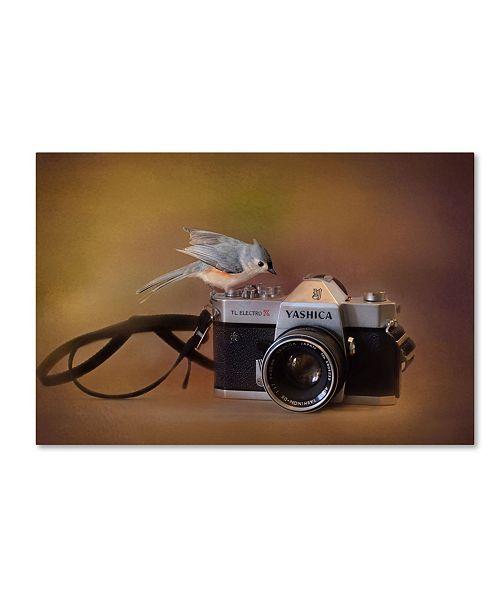 "Trademark Global Jai Johnson 'Feathered Photographer' Canvas Art - 19"" x 12"" x 2"""