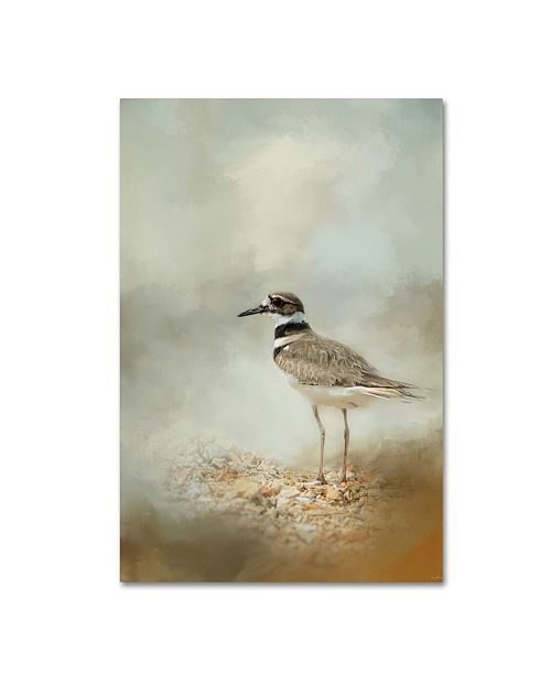 "Trademark Global Jai Johnson 'Killdeer On The Rocks' Canvas Art - 24"" x 16"" x 2"""
