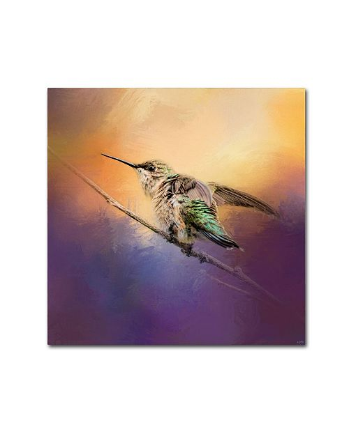 "Trademark Global Jai Johnson 'Hummingbird At Sunset' Canvas Art - 35"" x 35"" x 2"""