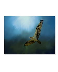 "Jai Johnson 'Osprey In The Evening Light' Canvas Art - 19"" x 14"" x 2"""