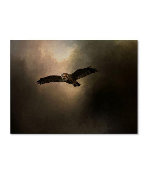 "Trademark Global Jai Johnson 'Night of The Owl 2' Canvas Art - 32"" x 24"" x 2"""