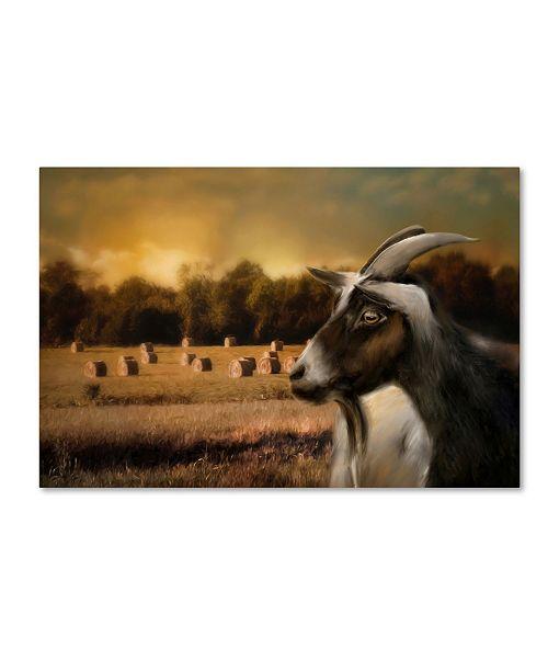 "Trademark Global Jai Johnson 'Hay Buffet' Canvas Art - 19"" x 12"" x 2"""