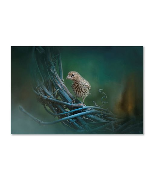 "Trademark Global Jai Johnson 'A Little Brown Bird On A Little Blue Wreath' Canvas Art - 19"" x 12"" x 2"""