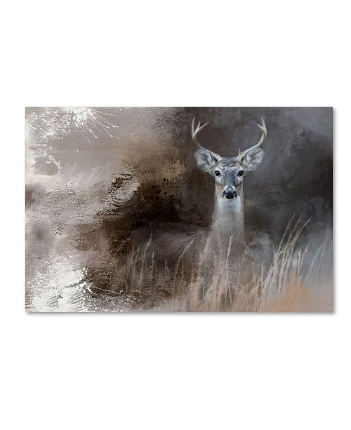 "Trademark Global Jai Johnson 'Buck In The Shadows' Canvas Art - 32"" x 22"" x 2"""