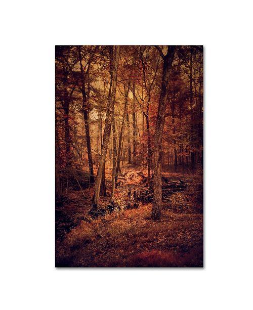 "Trademark Global Jai Johnson 'Shiloh Creek 3' Canvas Art - 47"" x 30"" x 2"""