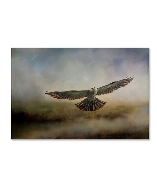 "Trademark Global Jai Johnson 'Mississippi Kite In The Marsh' Canvas Art - 32"" x 22"" x 2"""