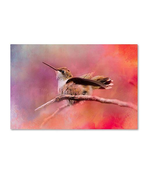 "Trademark Global Jai Johnson 'Pretty In Pink' Canvas Art - 19"" x 12"" x 2"""