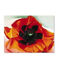 "Georgia O'Keefe 'Poppy' Canvas Art - 47"" x 35"" x 2"""