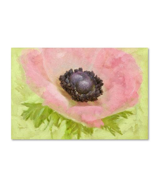 """Trademark Global Cora Niele 'Anemone Pink And Lime' Canvas Art - 24"""" x 16"""" x 2"""""""