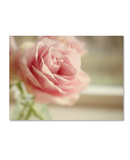 "Trademark Global Cora Niele 'Dreamy Rose' Canvas Art - 19"" x 14"" x 2"""