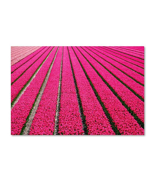 "Trademark Global Cora Niele 'Tulip Field Hot Pink' Canvas Art - 47"" x 30"" x 2"""