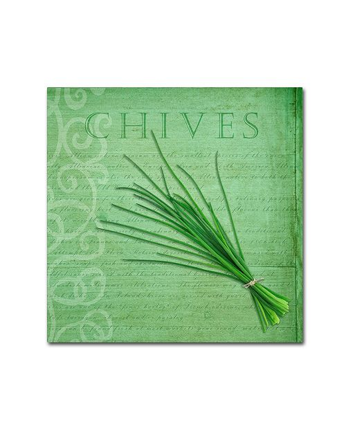 "Trademark Global Cora Niele 'Classic Herbs Chives' Canvas Art - 18"" x 18"" x 2"""