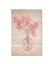 "Cora Niele 'Pink Sweet Peas' Canvas Art - 19"" x 12"" x 2"""