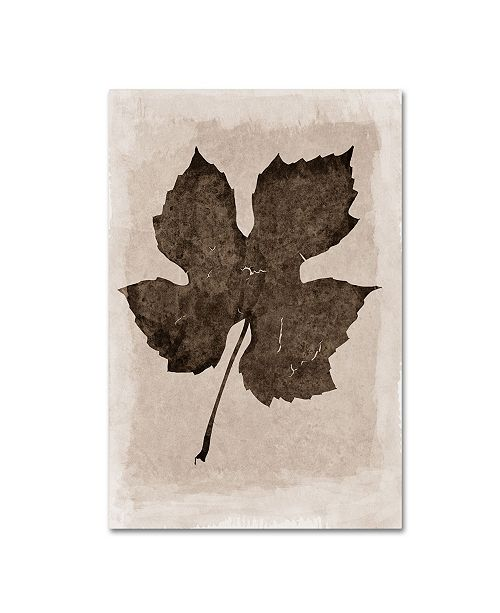 "Trademark Global Cora Niele 'Sepia Grape Leaf' Canvas Art - 19"" x 12"" x 2"""