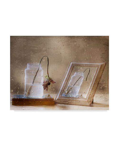 "Trademark Global Delphine Devos 'Reflection Of Life' Canvas Art - 47"" x 2"" x 35"""