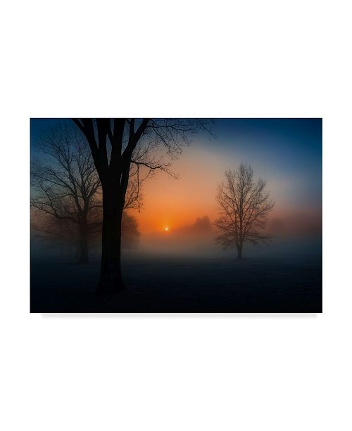 "Trademark Global David Dai 'Foggy Sunrise' Canvas Art - 19"" x 2"" x 12"""