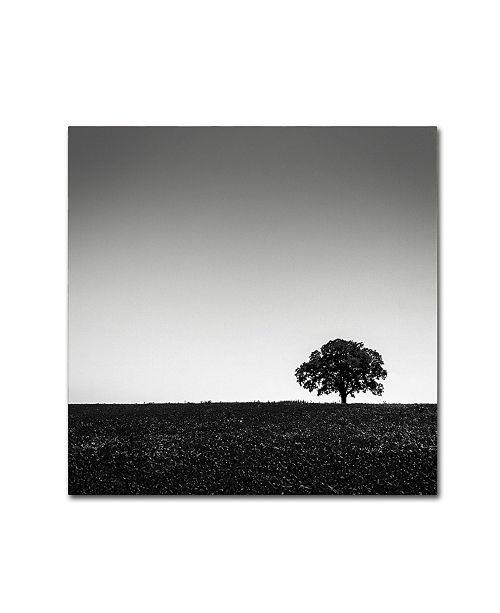 "Trademark Global Dave MacVicar 'One Tree Hill' Canvas Art - 35"" x 35"" x 2"""
