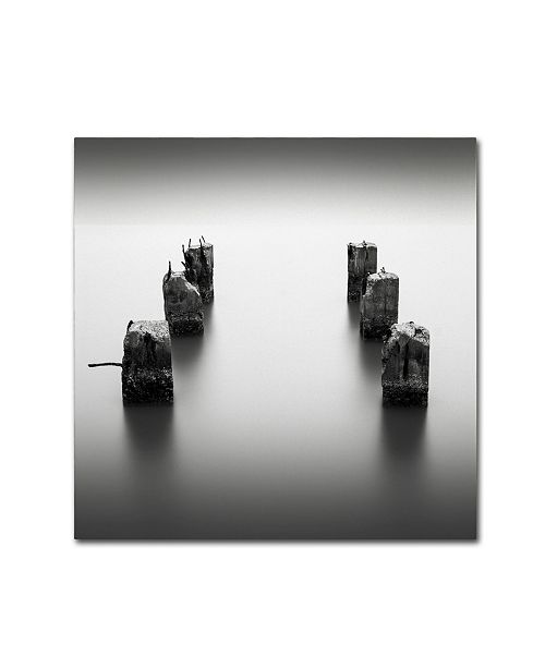 "Trademark Global Dave MacVicar 'Pillars' Canvas Art - 35"" x 35"" x 2"""