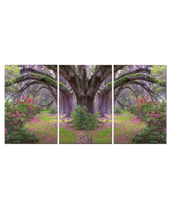 "Chic Home Decor Lavender Cherry 3 Piece Wrapped Canvas Wall Art Garden -20"" x 40"""