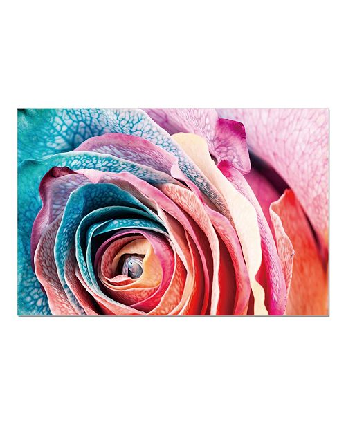 "Chic Home Decor Rosalia 1 Piece Wrapped Canvas Wall Art Rose In Bloom -20"" x 27"""