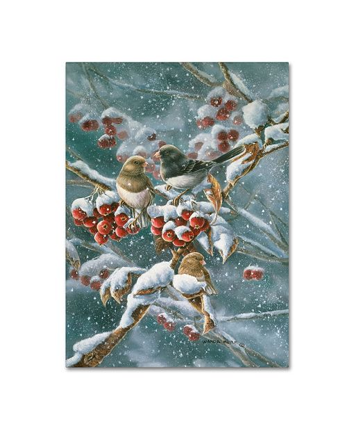 "Trademark Global Wanda Mumm 'Junco And Crab Apple' Canvas Art - 32"" x 24"" x 2"""