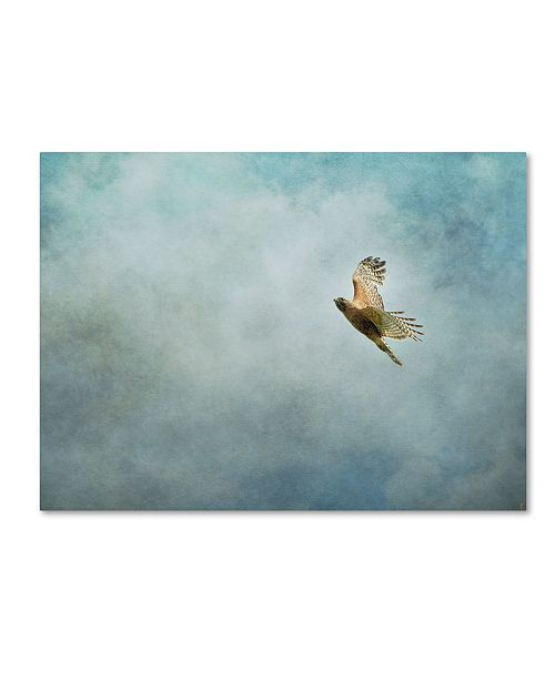 """Trademark Global Jai Johnson 'Up Up And Away Red Shouldered Hawk' Canvas Art - 19"""" x 14"""" x 2"""""""