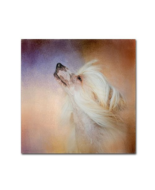 """Trademark Global Jai Johnson 'Wind In Her Hair Chinese Crested' Canvas Art - 24"""" x 24"""" x 2"""""""