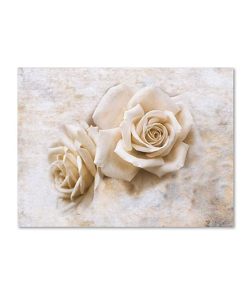 "Trademark Global Jai Johnson 'Vintage Rose 4' Canvas Art - 19"" x 14"" x 2"""