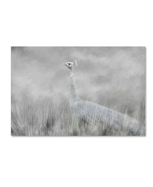 "Trademark Global Jai Johnson 'White Beauty In The Field' Canvas Art - 19"" x 12"" x 2"""