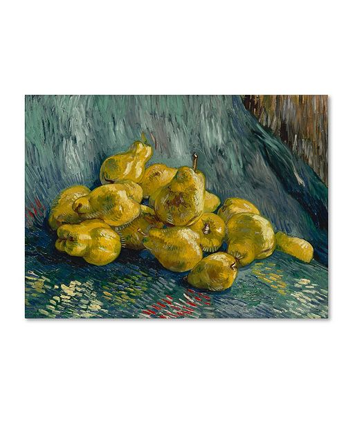"Trademark Global Van Gogh 'Still Life With Quinces' Canvas Art - 19"" x 14"" x 2"""