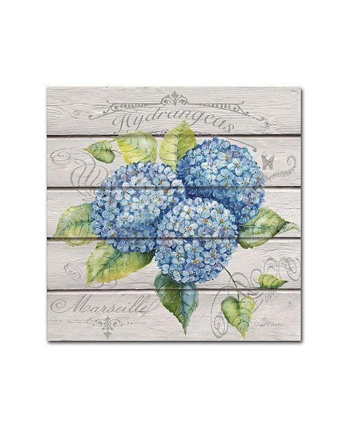 "Trademark Global Jean Plout 'Blue Hydrangeas' Canvas Art - 14"" x 14"" x 2"""