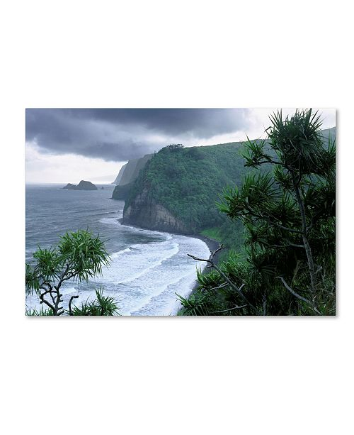 "Trademark Global Mike Jones Photo 'Pololu Valley' Canvas Art - 32"" x 22"" x 2"""