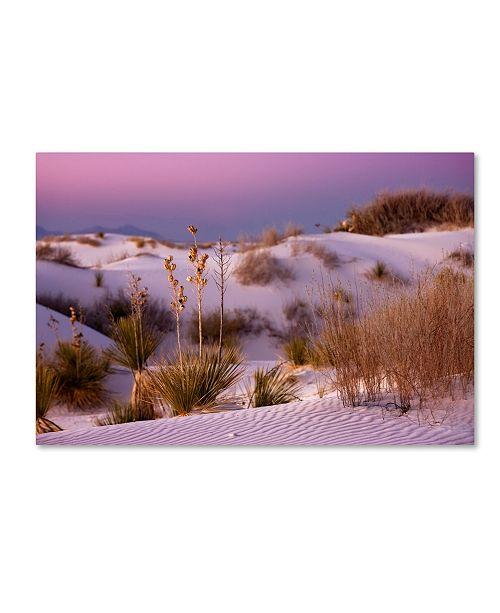"Trademark Global Mike Jones Photo 'White Sands Dusk' Canvas Art - 47"" x 30"" x 2"""