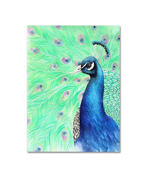 "Trademark Global Michelle Faber 'Mr Peacock' Canvas Art - 19"" x 14"" x 2"""