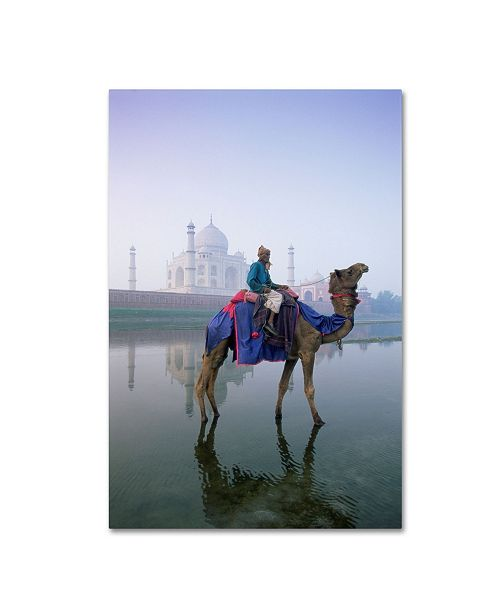 """Trademark Global Robert Harding Picture Library 'Camels 3' Canvas Art - 47"""" x 30"""" x 2"""""""