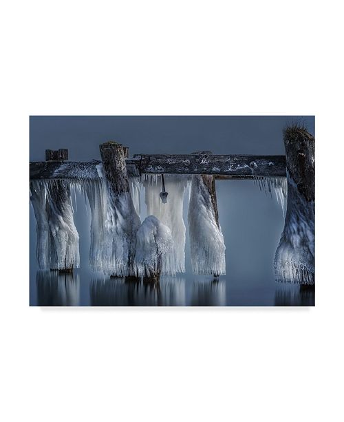 "Trademark Global Susan Breau 'Frozen Solid' Canvas Art - 19"" x 2"" x 12"""