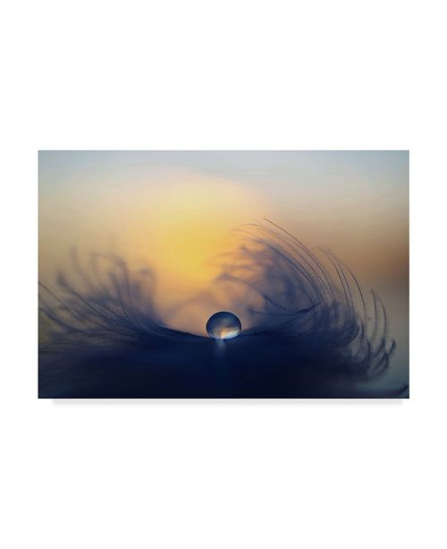 "Trademark Innovations Peep Loorits 'Morning Drops' Canvas Art - 32"" x 2"" x 22"""