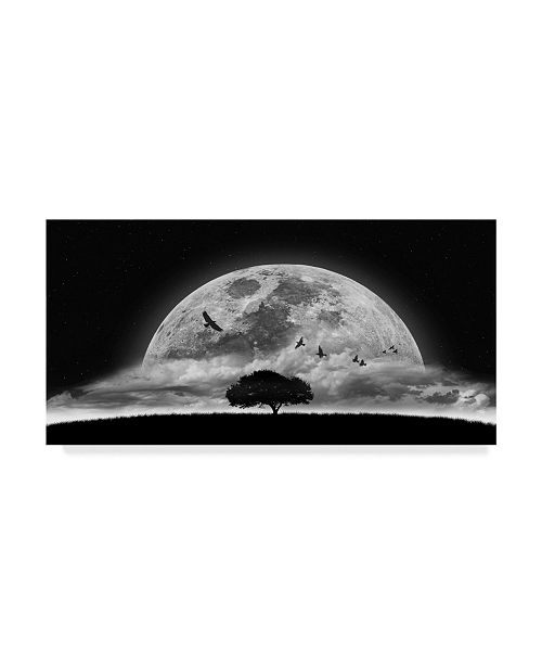 """Trademark Global Nasser Osman 'A Dream Tree' Canvas Art - 19"""" x 10"""" x 2"""""""