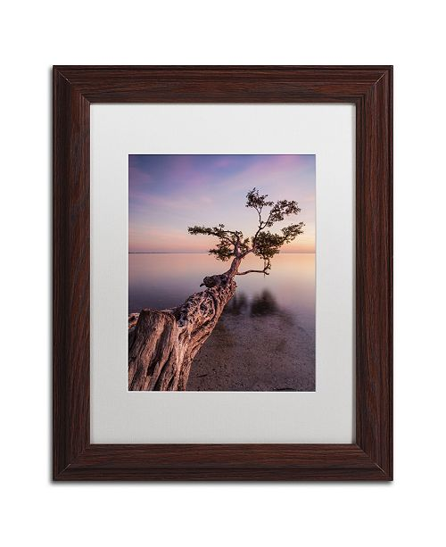 """Trademark Global Moises Levy 'Water Tree IV' Matted Framed Art - 14"""" x 11"""" x 0.5"""""""