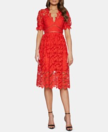Bardot Lace Fit & Flare Dress