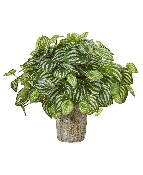 Nearly Natural Peperomia Artificial Plant in Weathered Oak Planter (Real Touch)