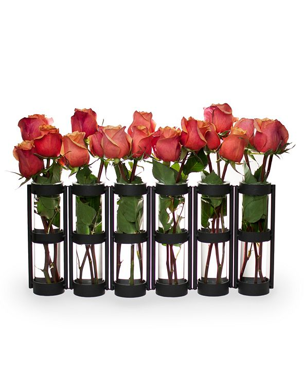 Danya B 6 Wide Tube Hinged Vases