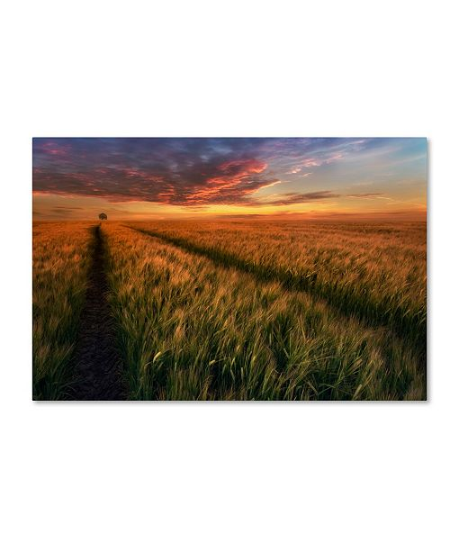 "Trademark Global Piotr Krol 'Somewhere At Sunset' Canvas Art - 19"" x 12"" x 2"""