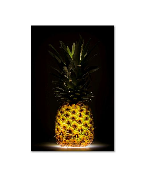 "Trademark Global Wieteke De Kogel 'Pineapple' Canvas Art - 24"" x 16"" x 2"""