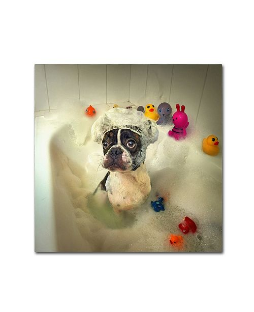 "Trademark Global Ddiarte 'The Bath' Canvas Art - 18"" x 18"" x 2"""