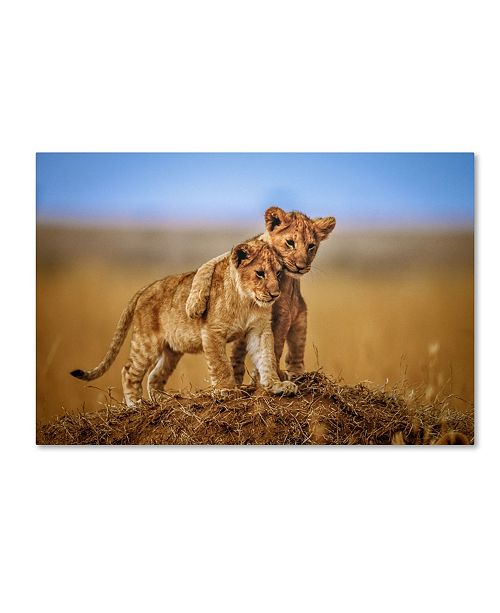 "Trademark Global Jeffrey C. Sink 'Brothers For Life' Canvas Art - 24"" x 16"" x 2"""