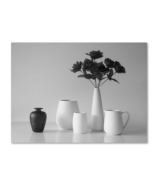 "Trademark Global Jacqueline Hammer 'Still Life In Black And White' Canvas Art - 32"" x 24"" x 2"""
