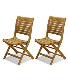 2 Piece Patio Dining Chair Set Folding